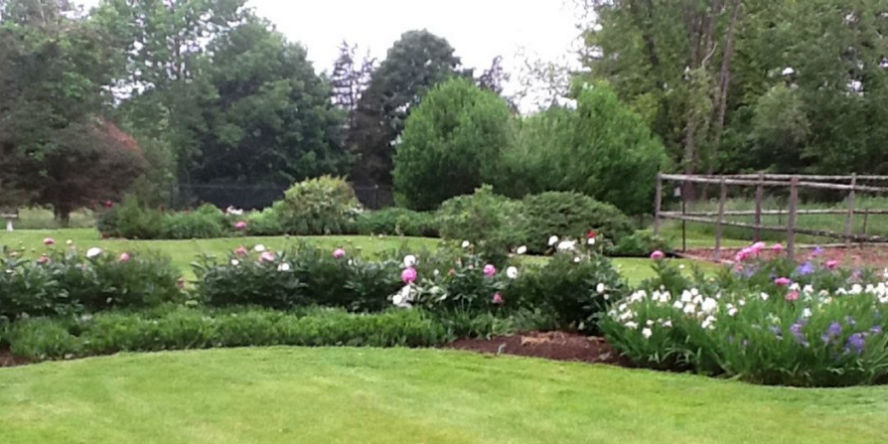 organic grounds with organic flower bed and trees new canaan ct