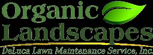 Organic Landscapes NY