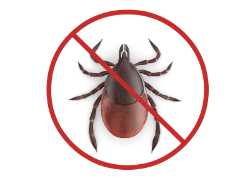 """graphic showing """"no ticks"""" for using organic tick control spray westchester ny"""